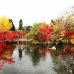 京都の紅葉シーズン。おすすめスポットはどこ?