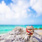 スキューバダイビングの国内おすすめスポットは日本が誇る沖縄の海‼