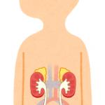 腎臓結石の治療法にはジェットコースターが有効って本当??